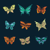 Set of colorful butterflies