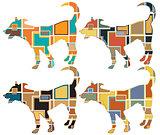 Young dog mosaics