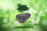 3D background with tree on rock against a defocussed background