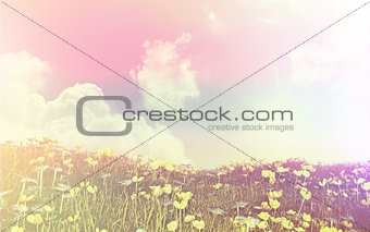 3D landscape of buttercups and daisies with retro effect