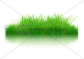 3D grass with reflection