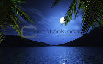 3D palm trees at moonlight