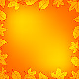 Autumn leaves frame