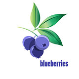 bright blueberries