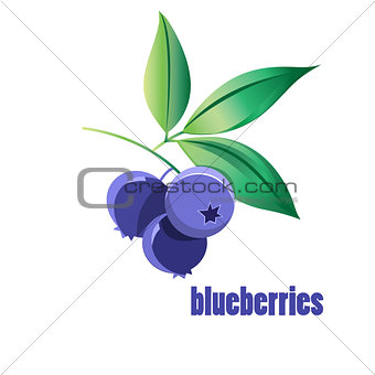 bright blueberries