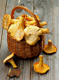 Raw Chanterelles