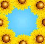 Floral frame with sunflowers