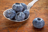 blueberries on tablespoon