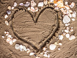 love and shells