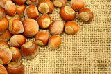 Hazelnuts on Sackcloth