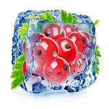 Red currant in ice