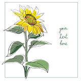 sunflower minimal card
