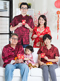 Chinese New Year portrait
