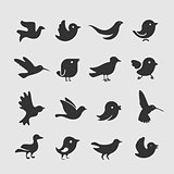 Vector Set of bird symbols