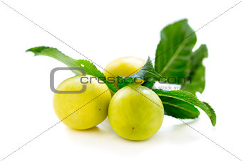 Small yellow plums.