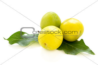 Three small yellow plums.