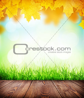 Autumn background with floor, grass and bokeh