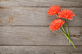Wooden background with orange gerbera flowers