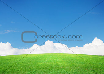 Green grass field and blue sky with clouds on horizon