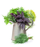 Fresh garden herbs in watering can