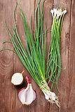 Fresh garden spring onion