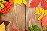 Autumn leaves and rowan berries over wood background