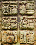 Mayan stone carved writing icons