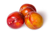 Three yellow and red plum near
