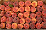 Fresh saturn peaches in a market.