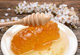 Honey, honeycomb and apricot flower