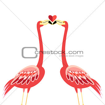 Kiss flamingos