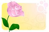 Greeting card wtih flower