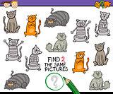 find same picture cartoon game