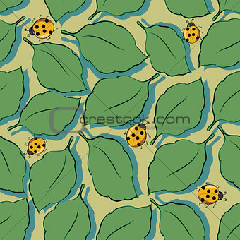 Background with leaves and ladybirds