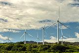 Kahuku Wind Farm