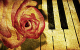 Music background with rose