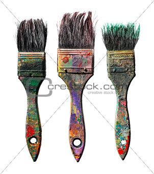 Ols Brushes