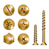 gold screw heads