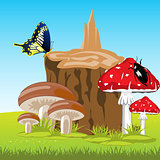 Mushrooms beside stump