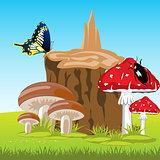 Mushrooms beside stump