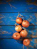 Onion on table