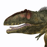 Giganotosaurus Head