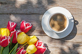 Colorful tulips and coffee cup on garden table