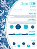 Cool cv template design with arrows