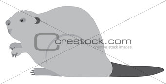 Beaver Grayscale Illustration