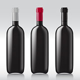 Set realistic glass bottles for wine