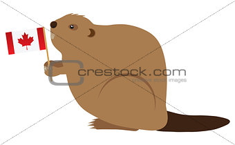Canadian Beaver Color Illustration
