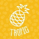 Pineapples on seamless pattern