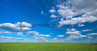 Sky and field