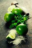 Fresh mojito drink